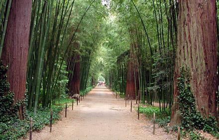 bambouseraie_anduze.jpg
