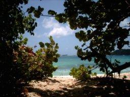 cap Macré, au sud de la Martinique