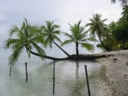 le lagon vert, Avatoru, polynésie française