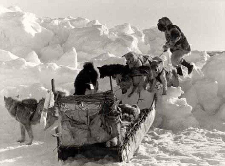 Une barrière d'hummocks (blocs de glace déchiquetés s'élevant de plusieurs mètres au-dessus de la banquise) entre le Groenland et la terre d'Ellesmere, 1951, Coll. Jean Malaurie