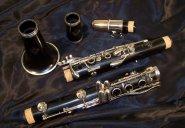dans les années 1927-28,  Marcel apprend la clarinette dans la fanfare des Cadets de La Chaux-de-Fonds  et devient bientôt clarinette solo